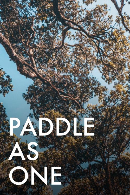 DJ10437_Enspire_Value_Paddle_as_one_v1